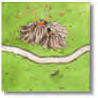 Princess And Dragon C1 Tile 25.jpg