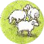 Hills And Sheep C1 Token 03.jpg