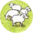 Hills And Sheep C1 Token 04.jpg